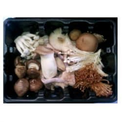 Forest Mix Mushrooms 1kg